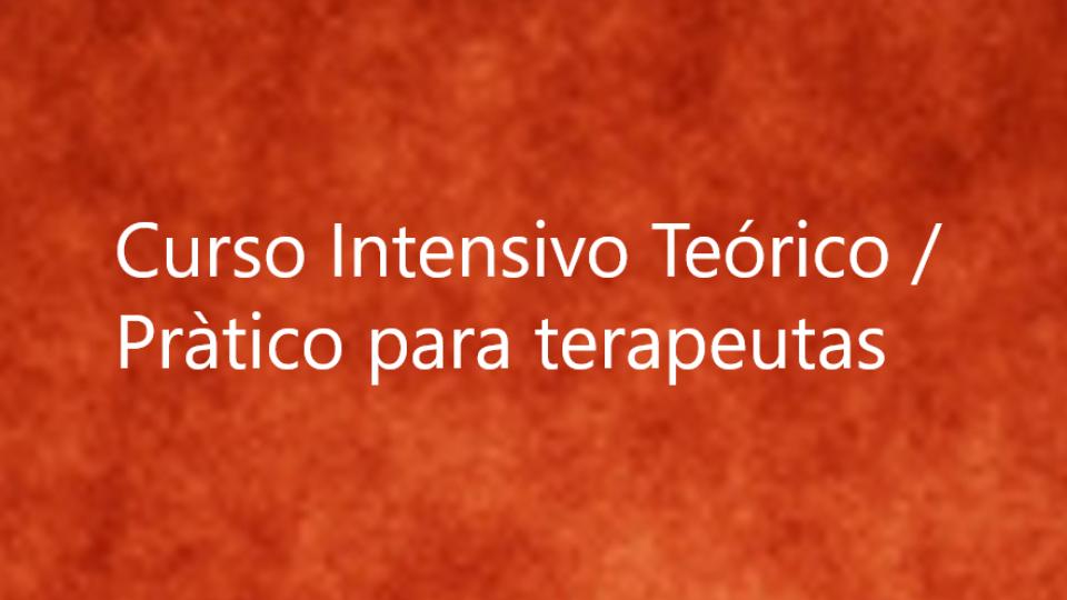 Curso Intensivo Teórico / Pràtico de una semana para terapeutas y terapeutas en formación – en lengua Castellana.