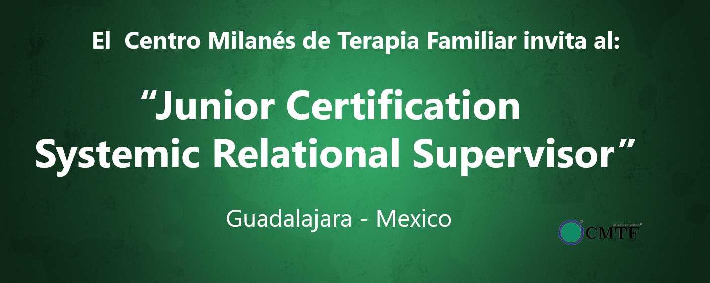 Junior Certification - Systemic Relational Supervisor - CMTF